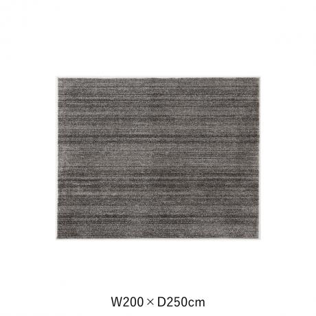 リュストル 200X250 Dグレー スペースカーペット