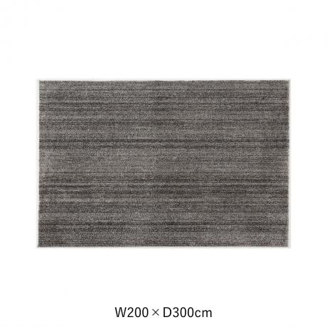 リュストル 200X300 Dグレー スペースカーペット