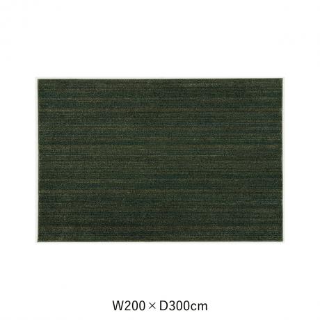 リュストル 200X300 Fグリーン スペースカーペット