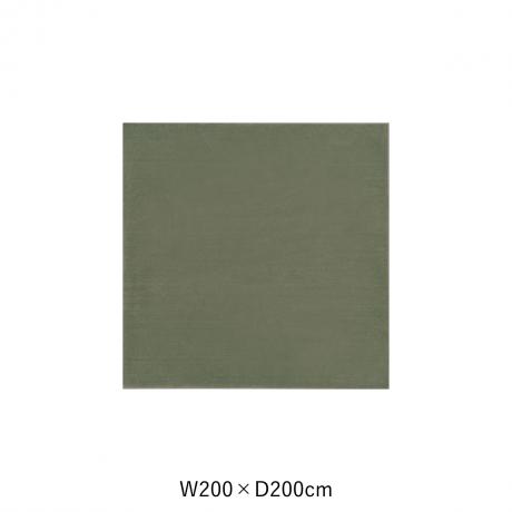 カーム 200X200 ダークグリーン スペースカーペット