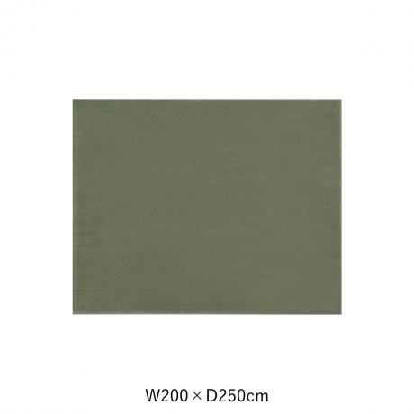 カーム 200X250 ダークグリーン スペースカーペット