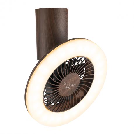 スワン電器 slimac LED小型シーリングライト FCE-223BR